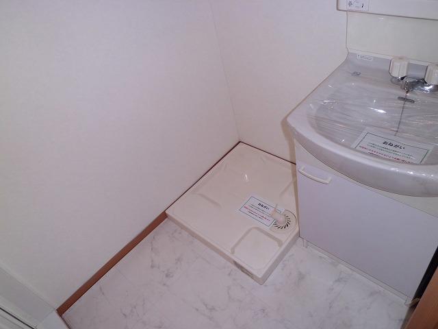 サウダージ自由が丘 301号室の洗面所