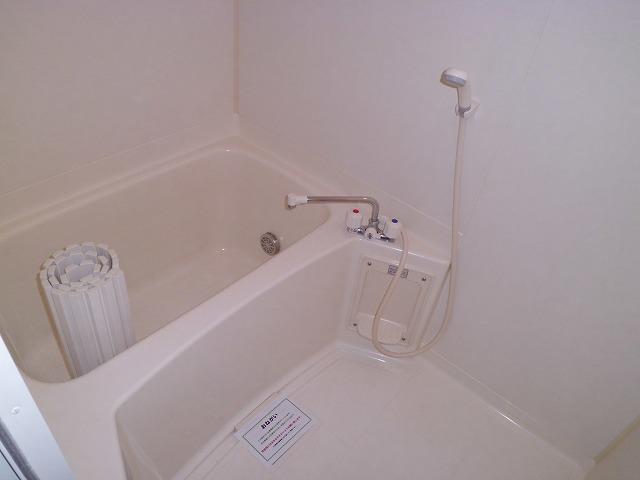 サウダージ自由が丘 301号室の風呂