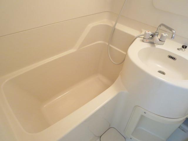 ルーニィ平町 202号室の風呂