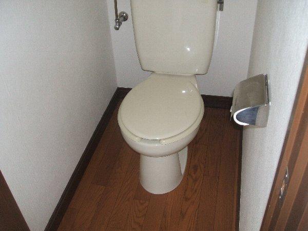 グリーンハウス上野毛 D号室のトイレ