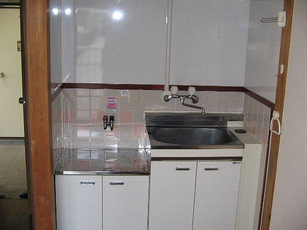 グリーンハウス上野毛 D号室のキッチン