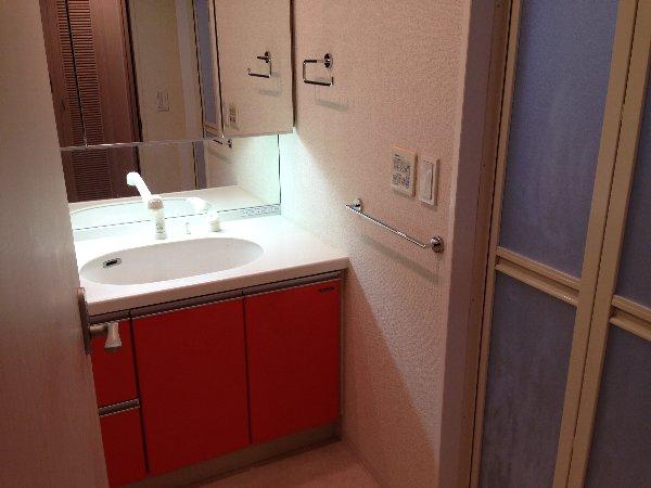 モンテバレ等々力 404号室の洗面所