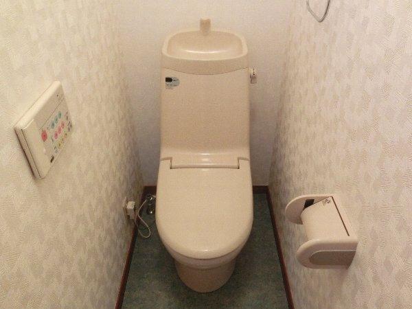 ルネス木嶋 201号室のトイレ