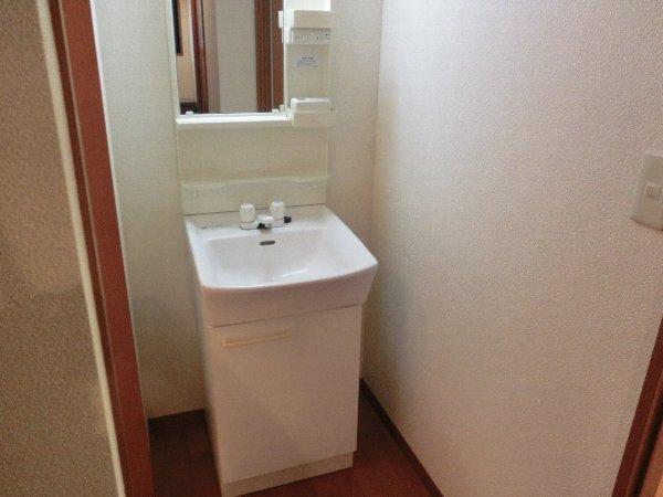 ルネス木嶋 201号室の洗面所