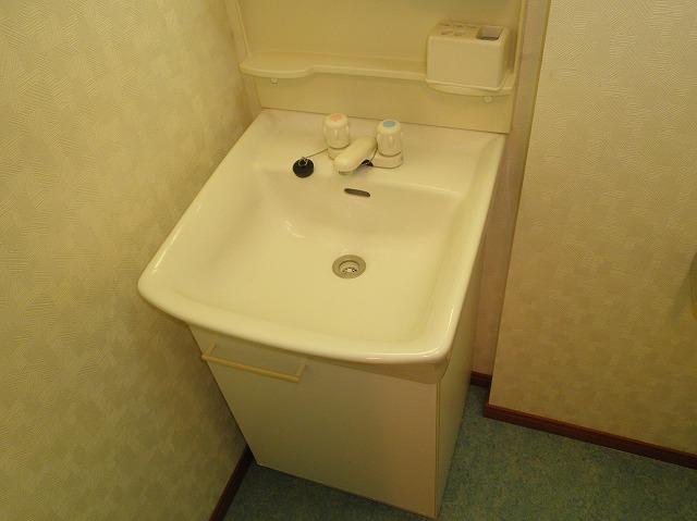 ルネス木嶋 302号室の洗面所