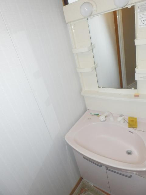 斉藤貸家 2F号室の洗面所