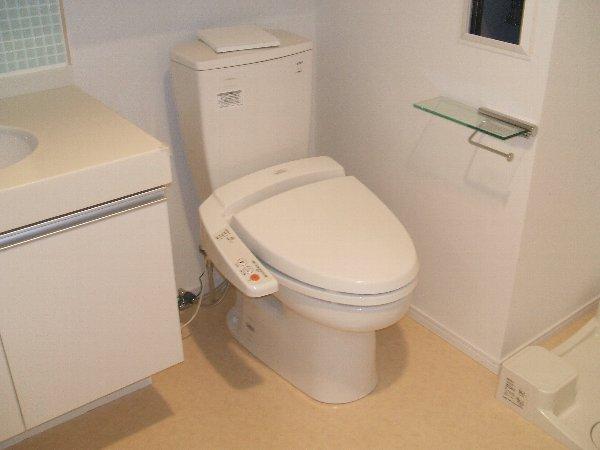ウィルテラス奥沢 205号室のトイレ