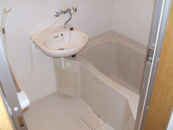 チェリーメゾン自由が丘 102号室の洗面所