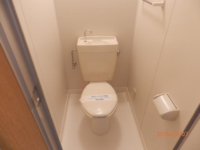 チェリーメゾン自由が丘 203号室のトイレ