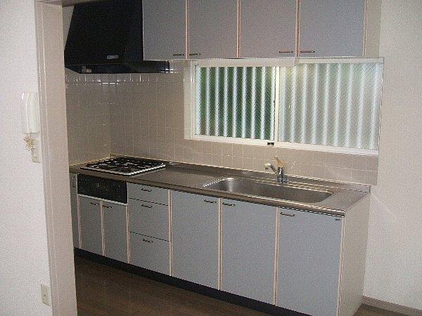 セシリア奥沢 201号室のキッチン