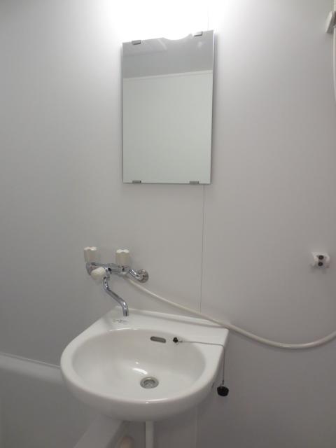 グリーンハイツシェスタ 202号室の洗面所