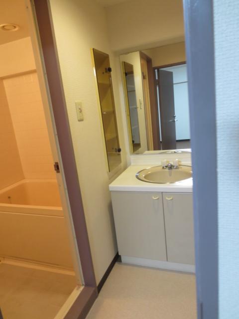 チッタカーサビアンカ 303号室の洗面所