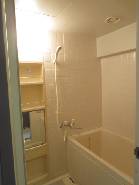 チッタカーサビアンカ 303号室の風呂