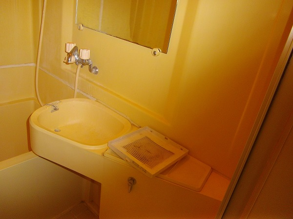 メゾン・ド・エクレール 203号室の洗面所