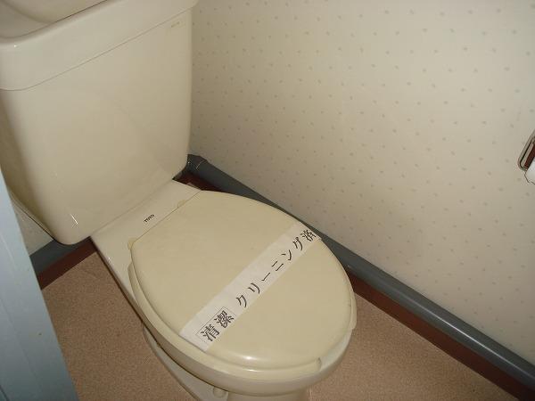 第13菊地ビル 4F号室のトイレ