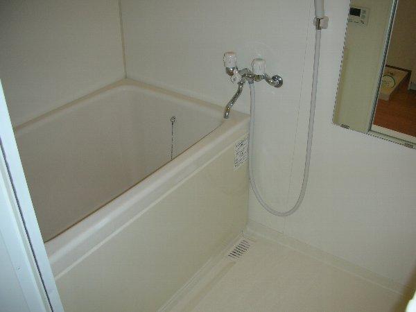 エルメゾンダイカネ 102号室の風呂