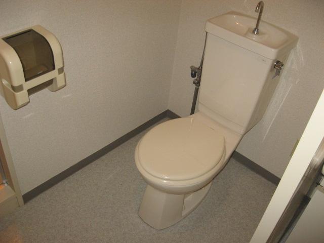 スカイビュー246 301号室のトイレ