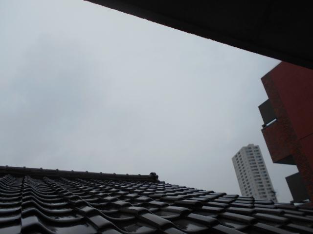 杉田ハイツ 202号室の景色