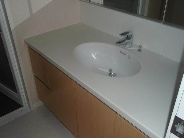 カスタリア若林公園 206号室の洗面所