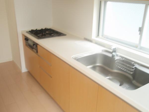 カスタリア若林公園 206号室のキッチン