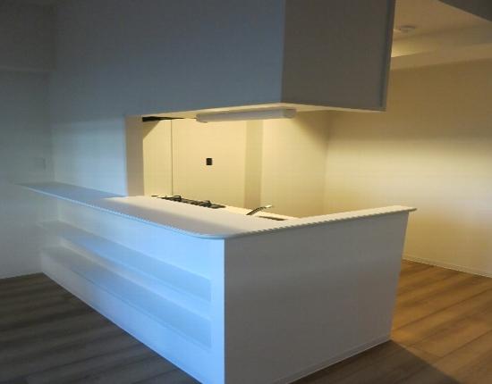 ベルメゾン若林 101号室のキッチン