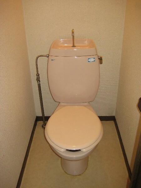 コスモハイツ極楽 105号室のトイレ
