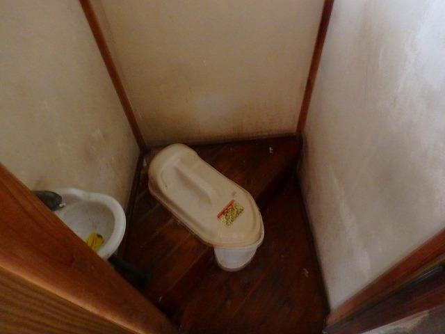 石山荘 101号室のトイレ