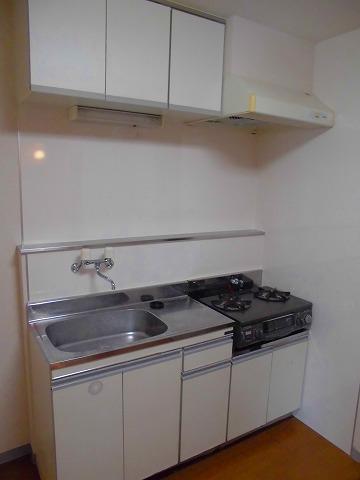 第一福寿ビル 103号室のキッチン