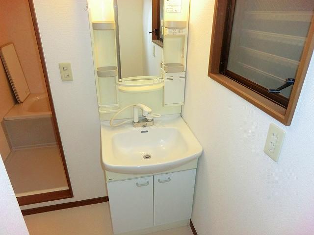 スプリングマンション 101号室の洗面所