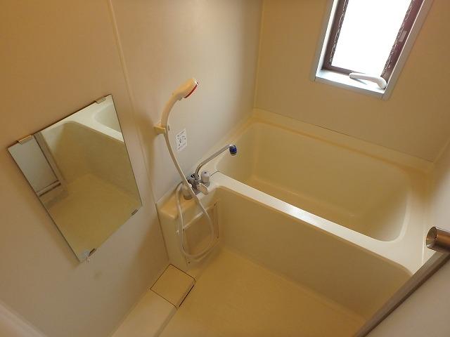 エミネンス 101号室の風呂