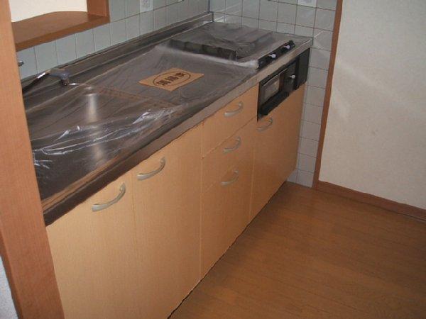 フォンテアベニュー 103号室のキッチン