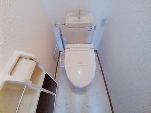エコーハイツマルオカ 205号室のトイレ