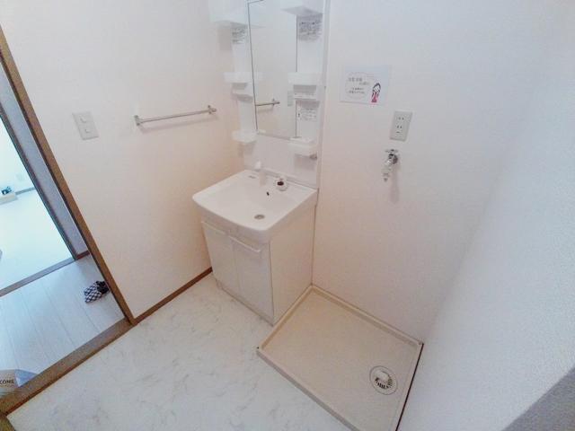 エコーハイツマルオカ 205号室の洗面所