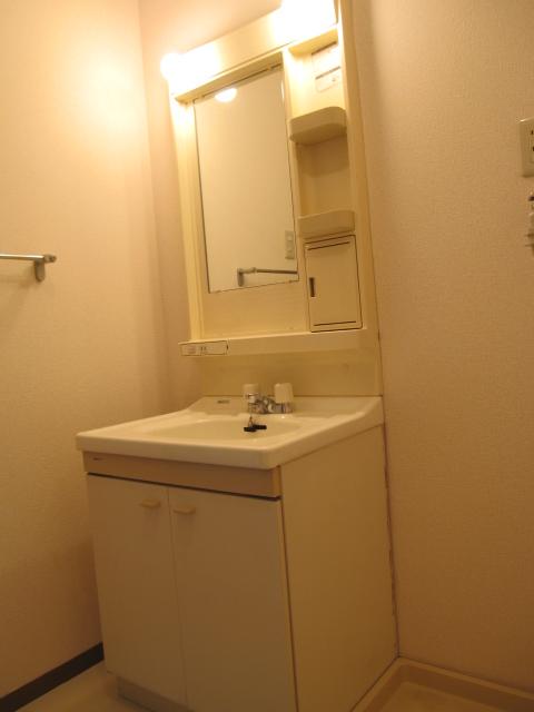 エコーハイツマルオカ 307号室の洗面所