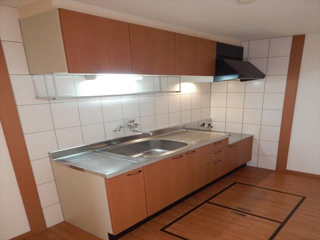 ビッグアップル 201号室のキッチン