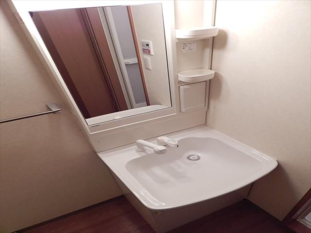ビッグアップル 201号室の洗面所