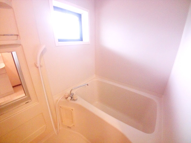 須藤ハイツ 202号室の風呂
