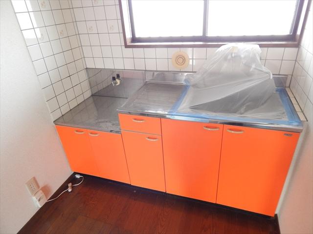 グランドソレイユⅡ 1-203号室のキッチン