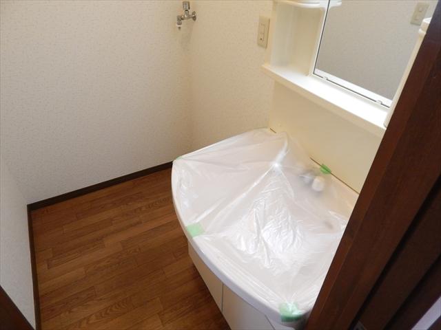 グランドソレイユⅡ 1-203号室の洗面所
