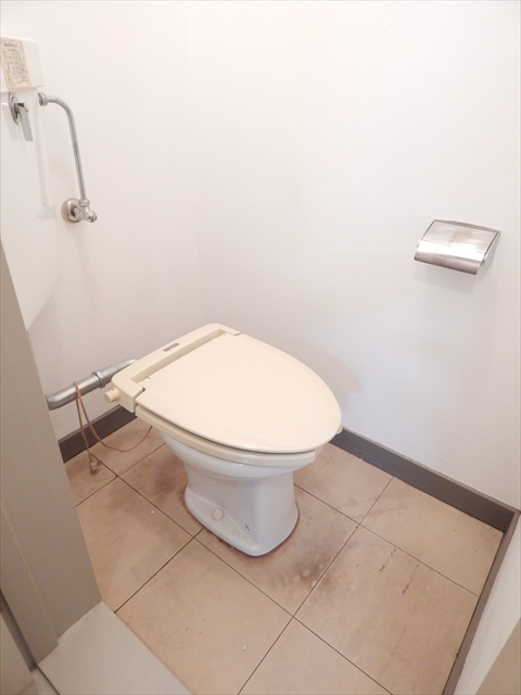 小川第一ビル 203号室のトイレ