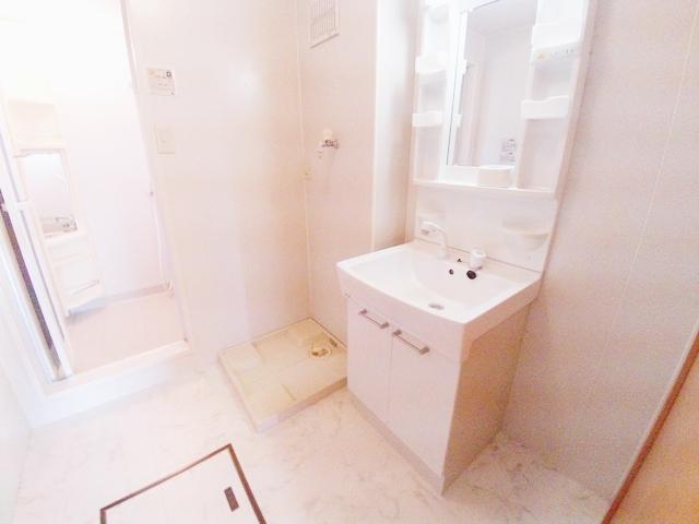 ローズガーデン 壱番館 305号室の洗面所