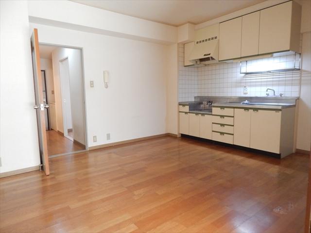 オクタビアヒル B-302号室のキッチン