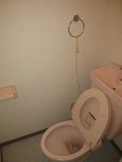 アーバンST 403号室のトイレ