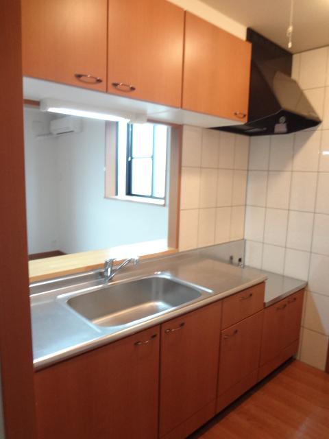 グレートノーブルA 203号室のキッチン