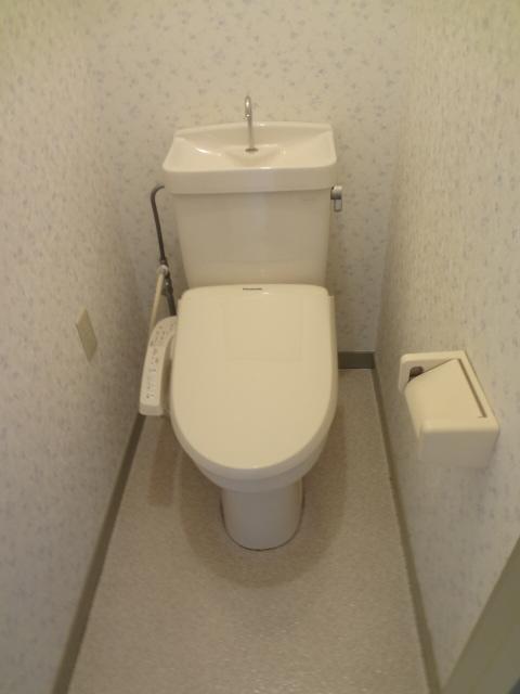 リトルリバーハイツ 202号室のトイレ