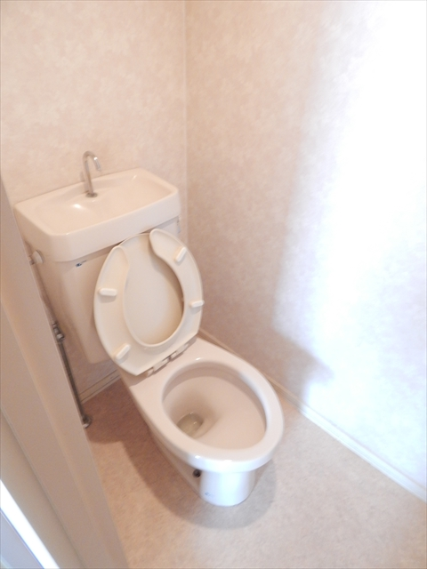 中根ハイツ 202号室のトイレ