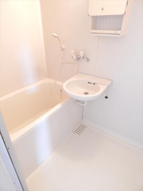 中根ハイツ 202号室の洗面所