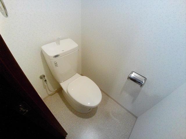 グロアール上尾 302号室のトイレ