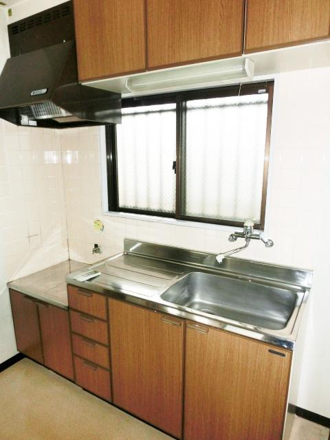 パレスグリーンフォレスト 303号室のキッチン