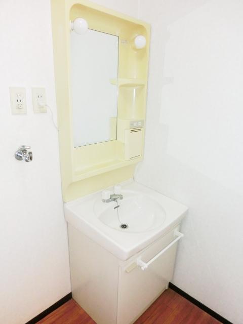 パレスグリーンフォレスト 303号室の洗面所